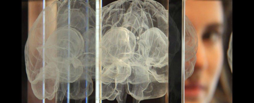 آپارات مغز جدید مشاهده فعالیت مغزی راهی برای درمان افسردگی! - دکتر مجازی