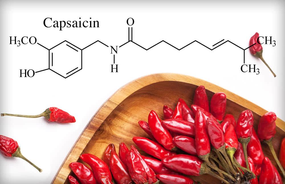 capsaicinoids