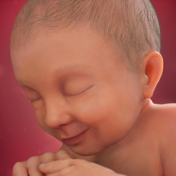 راهنمای بارداری هفته ی سی و هفتم