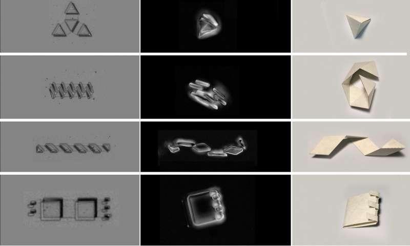 میکروربات