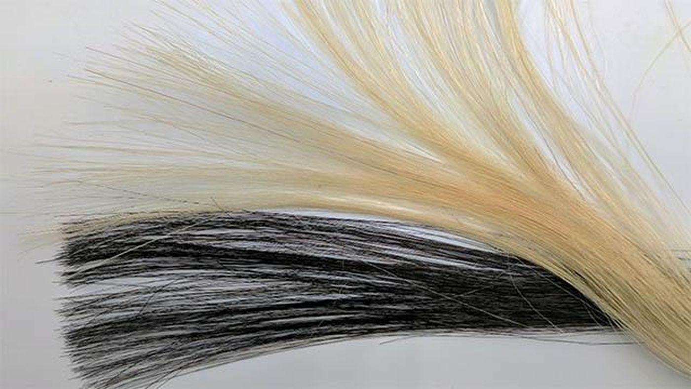 رنگ مو غیرسمی
