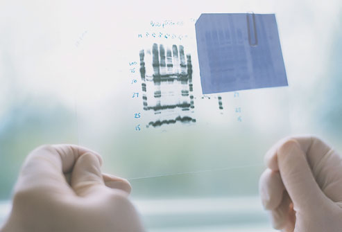 getty_rf_photo_of_dna_samples