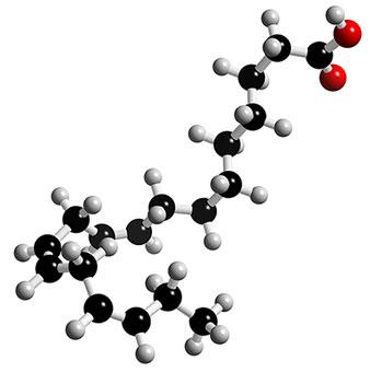 linolenic-acid-virtualdr.ir