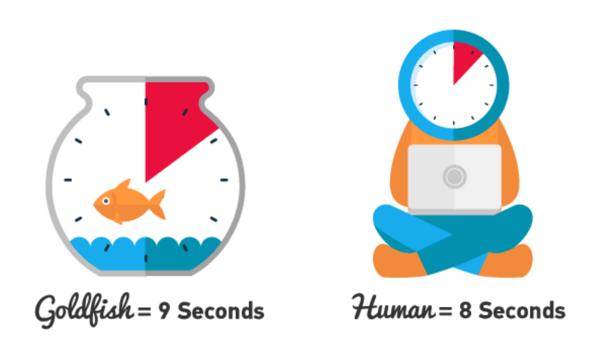 در سال ۲۰۰۰ با ۳ ثانیه اختلاف از ماهی قرمز جلوتر بودیم! الان ...