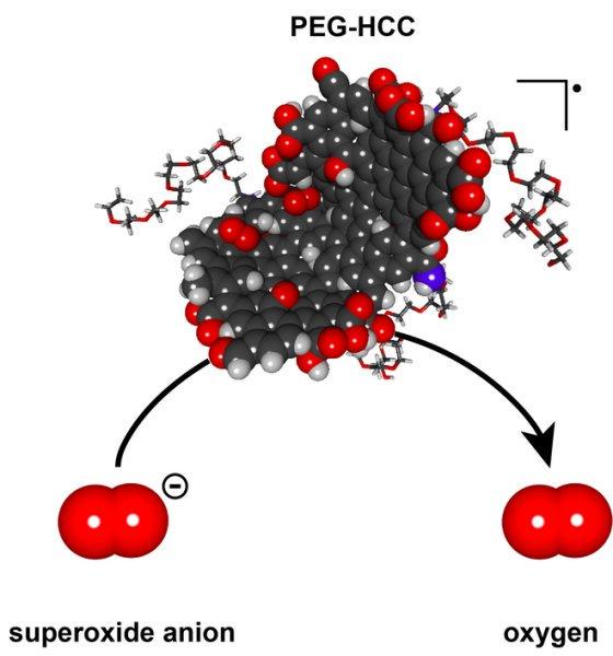شکل شماتیک مولکول PEG-HCC. همانطور که مشاهده میکنید این مولکول با مولکول پراکسید تعامل کرده و بار منفی آن را خنثی ساخته و در نهایت به مولکول اکسیژن تبدیل می کند.