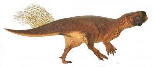 Psittacosaurus-dinosaur-illustration