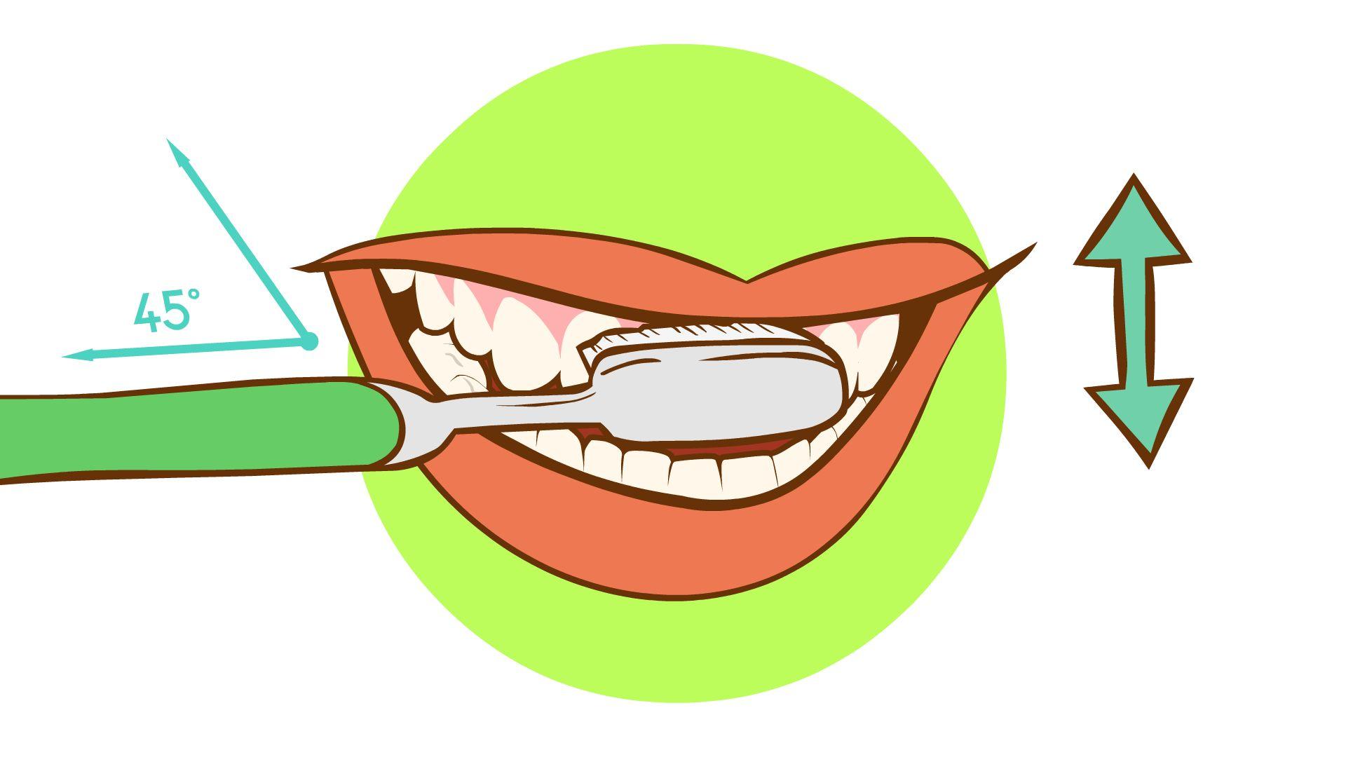 Brush-Your-Teeth-Step-6-Version-3