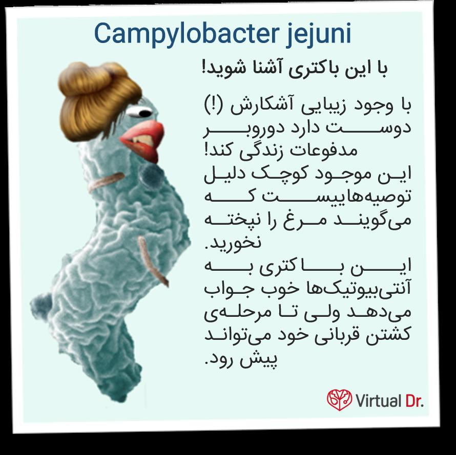c-jejuni-virtualdr-ir