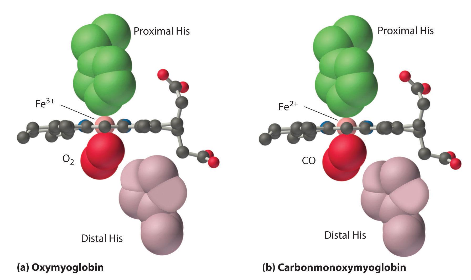 carbon-monoxide-vitualdr-ir