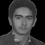 محمد حسين فلاحى