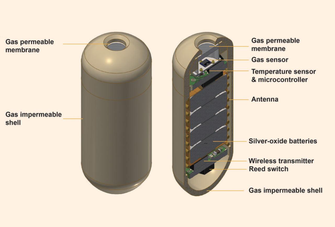 image_4221_2e-gas-sensor-capsule