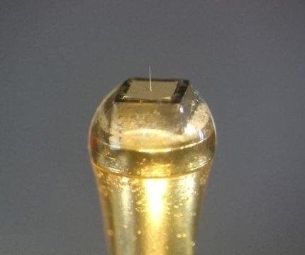 سوزن-الکترود 5 میکرونی روی کانکتوز (اعتبار تصویر متعلق به Toyohashi University of Technology میباشد).