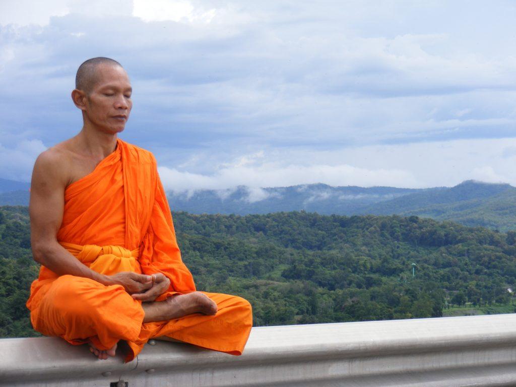 Tibetan Buddhist Meditator - Virtual Dr