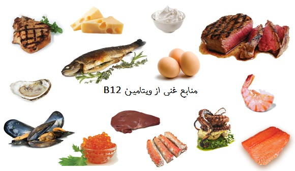 foods-high-in-vitamin