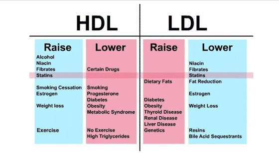 how-to-reduce-cholesterol-level-virtualdr