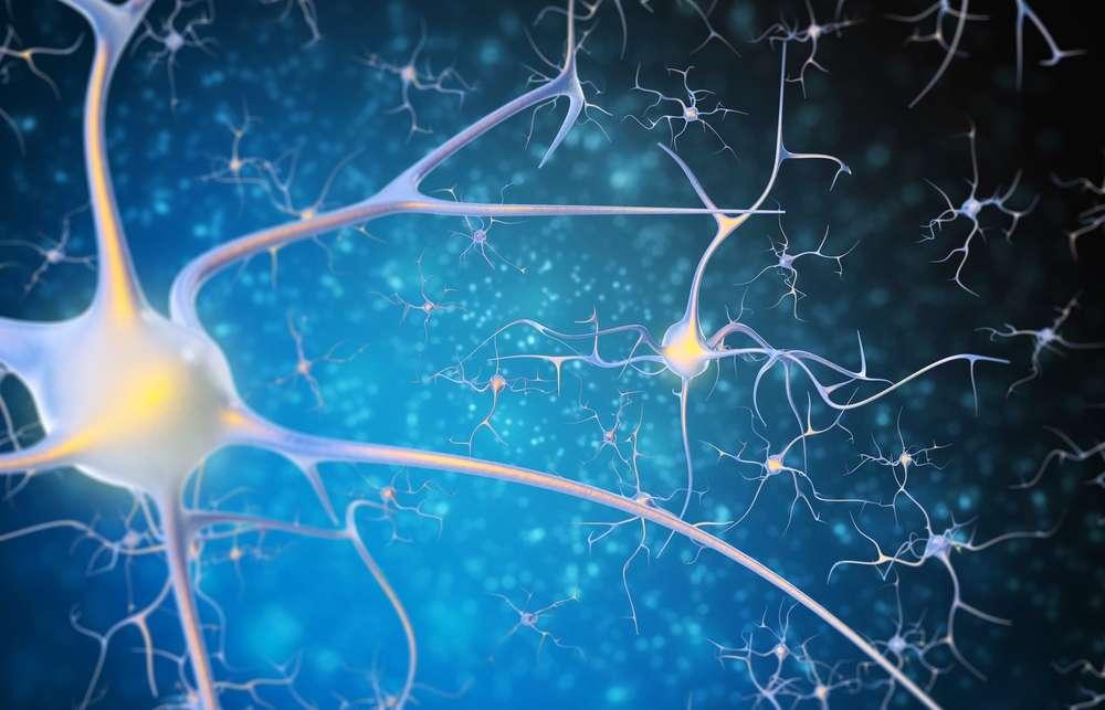 content-1479229690-neurons-connect
