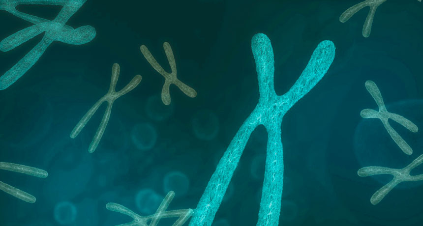 Extra Extra کروموزوم اضافی میتواند به مهار عوارض ناشی از جهشهای سرطانزا کمک کند. این یافته میتواند توجیهی برای آمار پایین ابتلا به سرطان در جمعیت مبتلایان به سندرم داون (تریزومی ۲۱) باشد. منبع: Science News