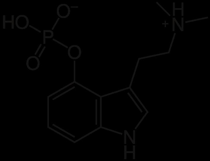 سیلوسایبین