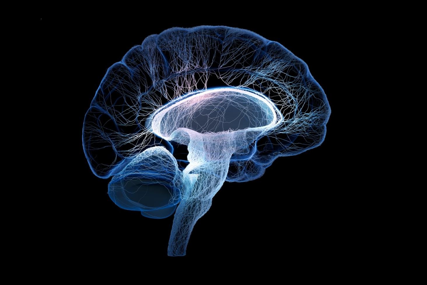 چگونه احساسات مغز را فریب میدهند؟