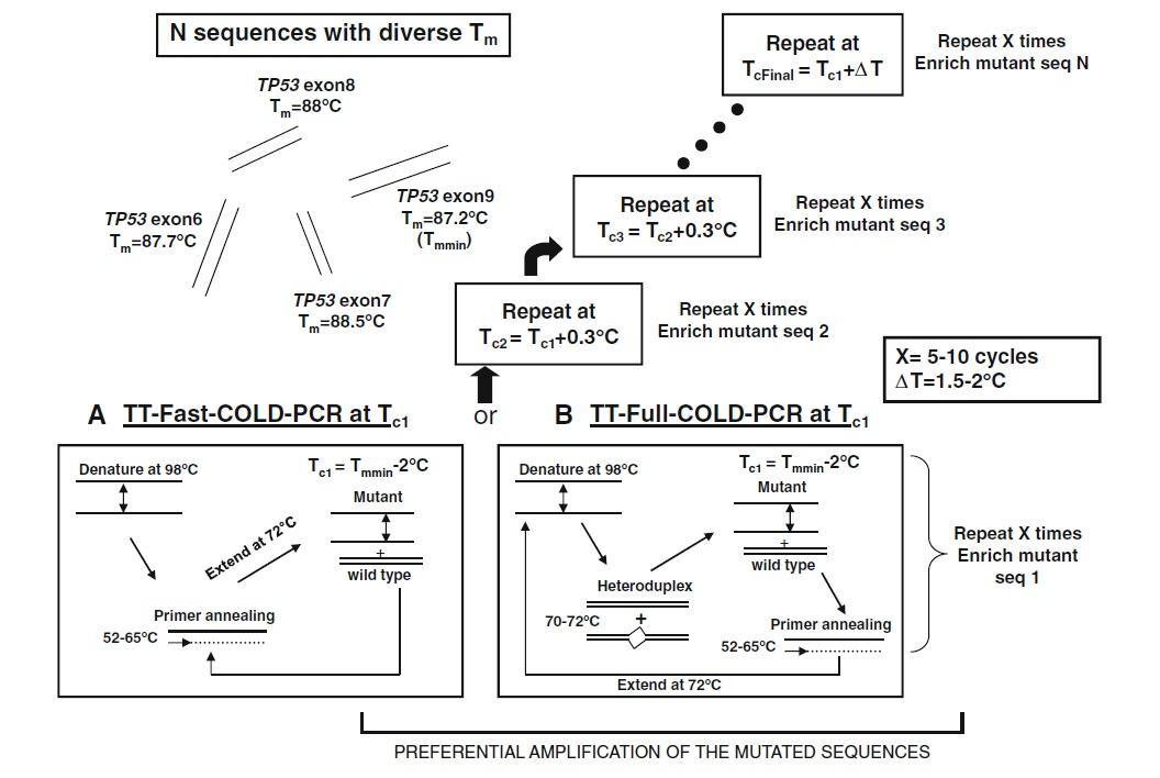 COLD-PCR