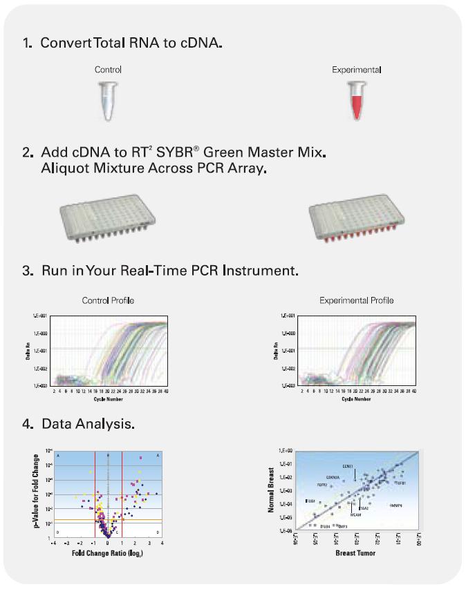 array-PCR