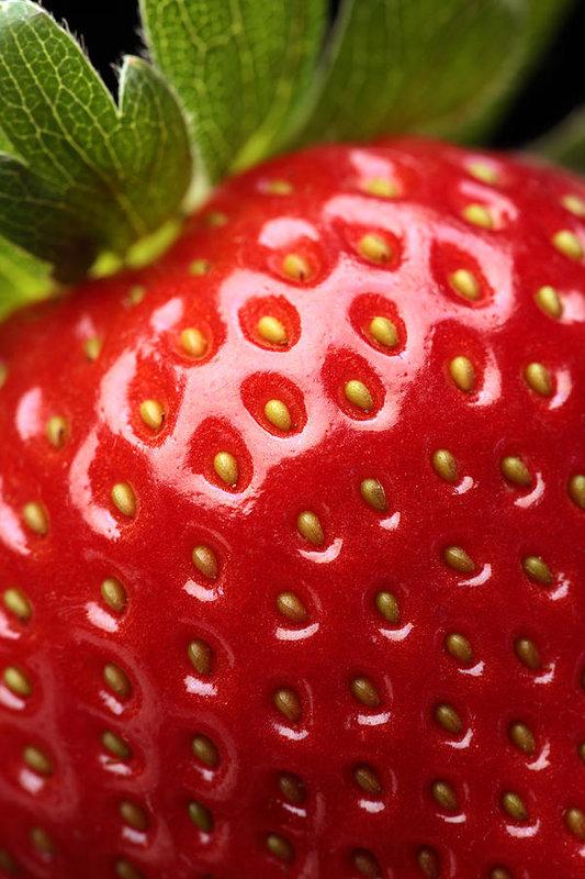 ترایپوفوبیا چیست؟ توتفرنگی