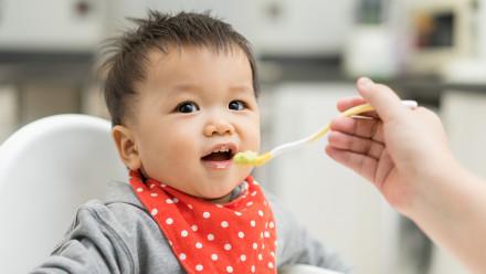 تغذیه کودک هشت ماهه